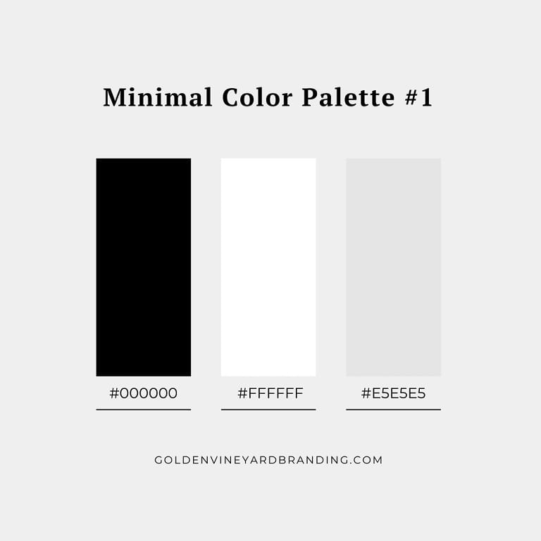 A minimalist color palette with monochrome colors - black , grey, and white.