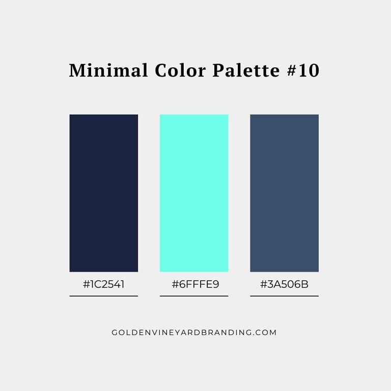 A minimalist color palette with turquoise and blue.