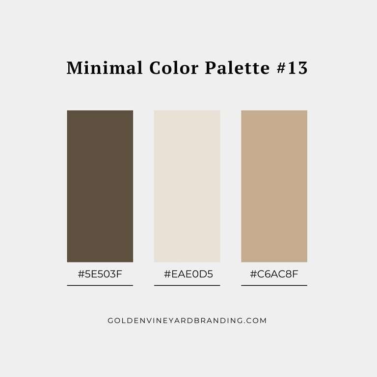 A minimalist color palette with shades of brown.