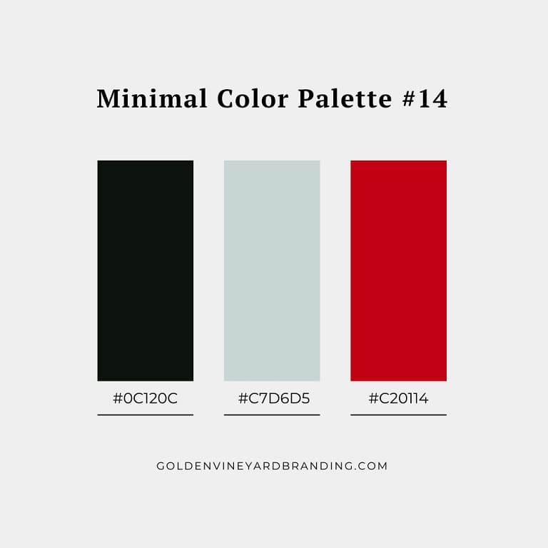 A minimalist color palette with a red accent color.